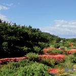 高山稲荷神社_歴史文化_つがる市